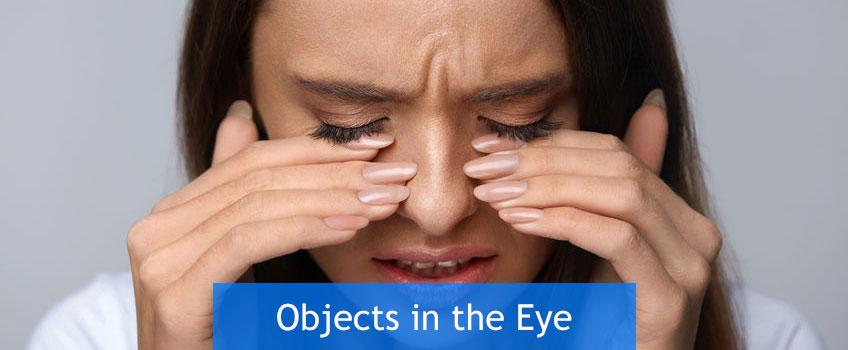 Objects-in-the-Eye